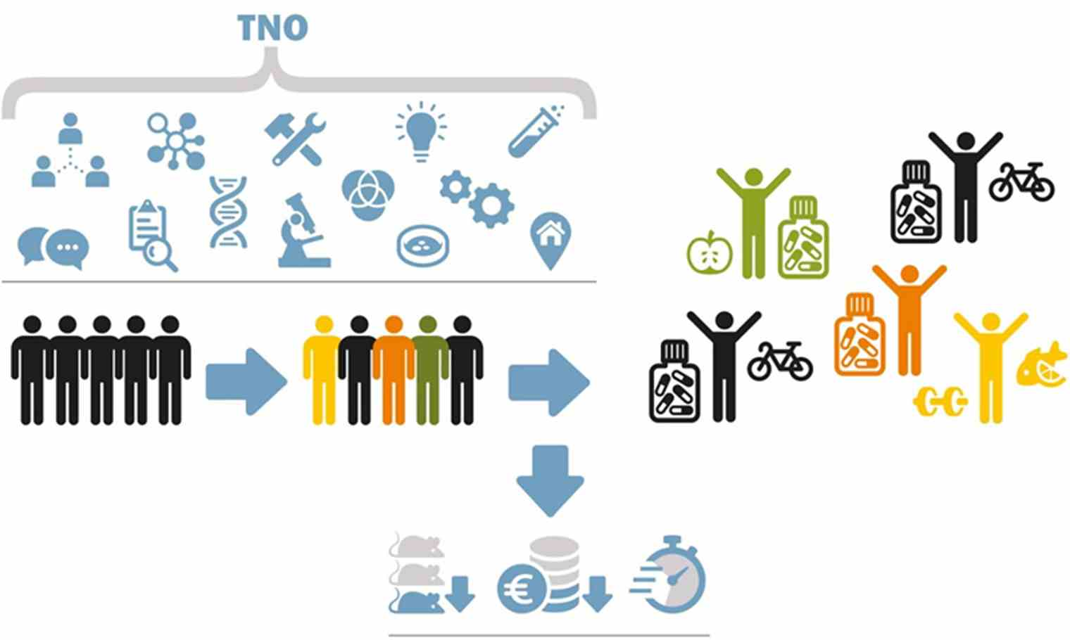 Early Research Program: Organ function-on-a-chip | TNO