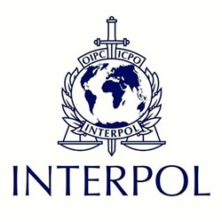 interpol_17062016_400.jpg